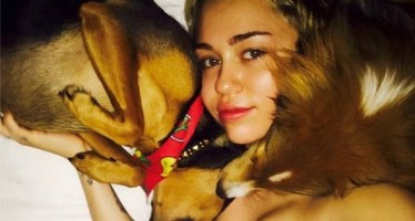 35 celebrity dog lovers