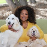 Oprah Winfrey is afraid of chewing bubblegum. (Photo: Archive)