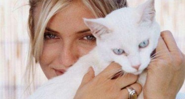 35 celebrities who are cat people