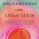 Land of Enchantment by Leigh Stein. (Photo: Archive)