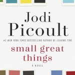 Small Great Things by Jodi Picoult. (Photo: Archive)