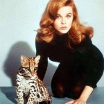 Ann-Margret. (Photo: Archive)