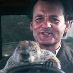 "Bill Murray and Punxsutawney Phil in American classic ""Groundhog Day."" (Photo: YouTube)"