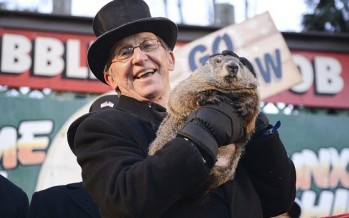 Punxa-Bawdy Phil? Scientists Say Groundhogs Emerge For Sexy Dates in February