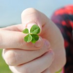 Look For Four-Leaf Clovers (Photo: Flickr)