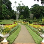 Visit the Botanical Gardens (Photo: Flickr)