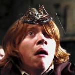 "Again, just like his HP character, Rupert has an extreme arachnophobia. When asked about working with spider in the films, he said ""that wasn't my favorite scene to film."" (Photo: Archive)"