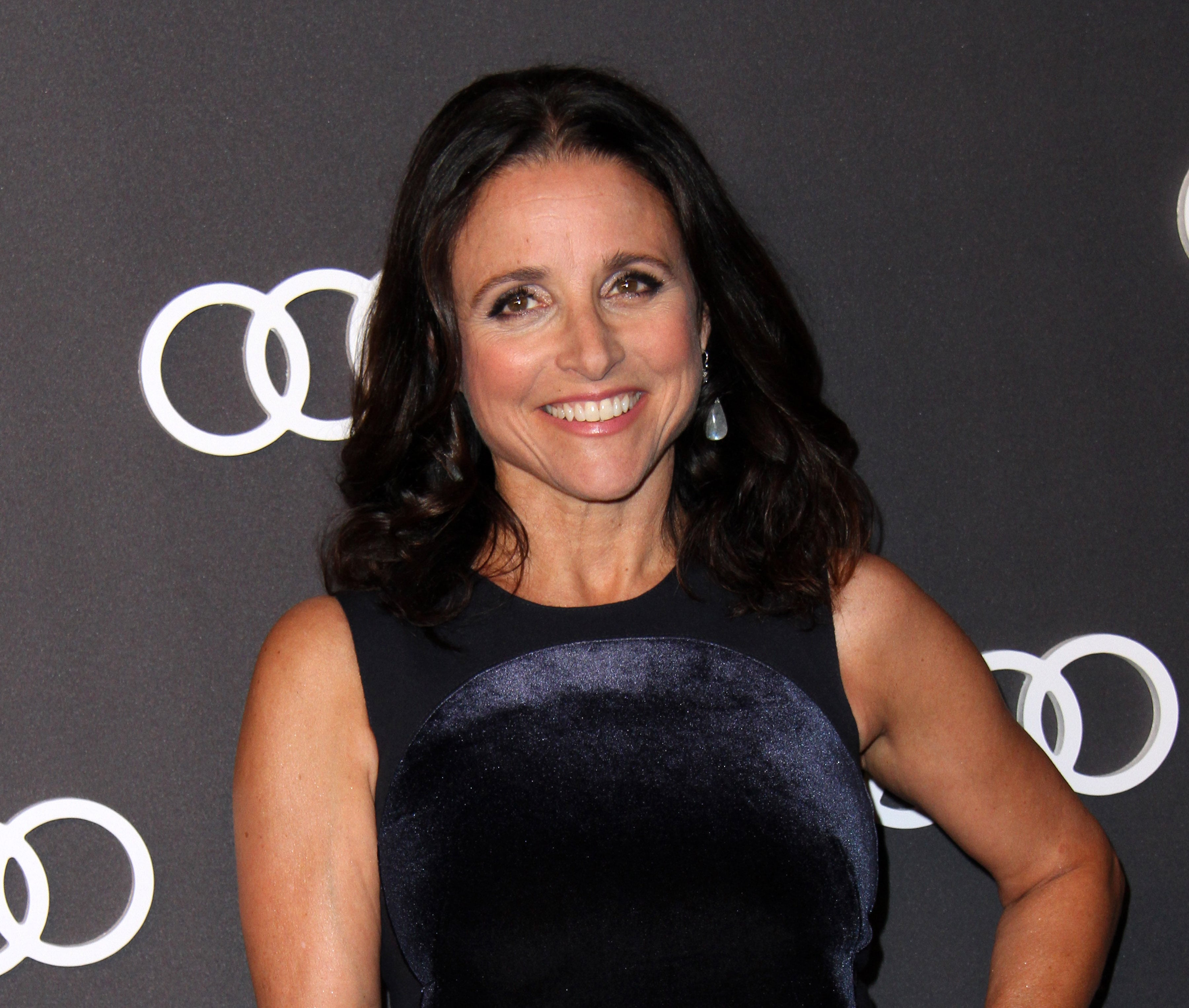 Actress Julia Louis-Dreyfus, 56, has breast cancer. (Photo: WENN)