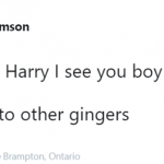 Good guy Harry giving hope to all gingers. (Photo: Twitter)