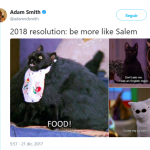 Salem knows what he's doing. (Photo: Twitter)