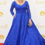 Bialik wore voluminous skirt and long sleeved royal blue lace dress by Oliver Tolentino at the 2014 Emmy Awards. (Photo: WENN)