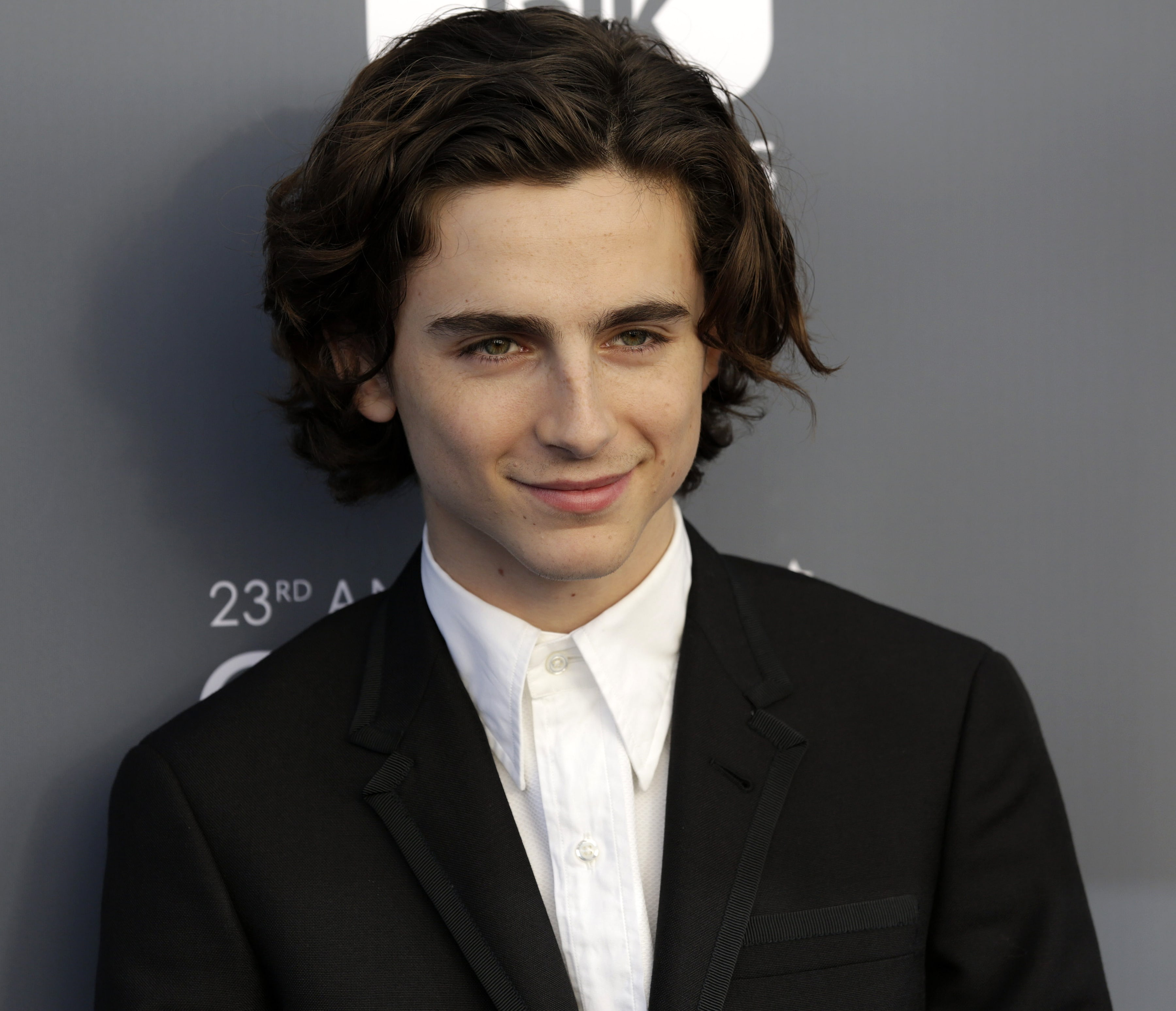 "Timothée Chalamet will donate his salary from ""A Rainy Day in New York"" to three charities. (Photo: WENN)"