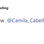 Because, you know, Camila. (Photo: Twitter)