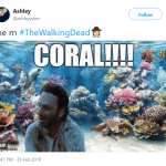 CORAL! (Photo: Twitter)