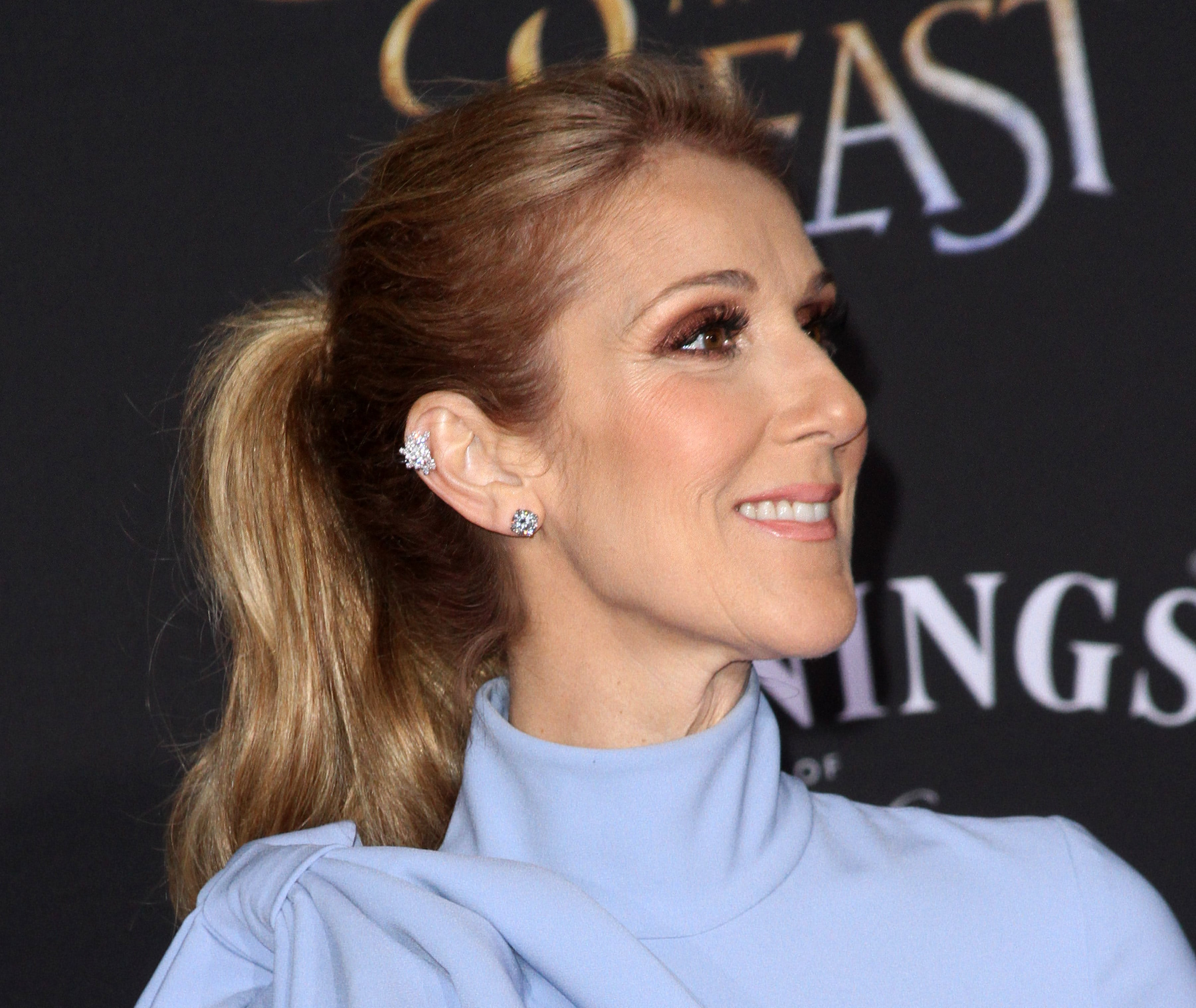 Céline Dion has been forced to cancel her shows in Las Vegas, Nevada. (Photo: WENN)