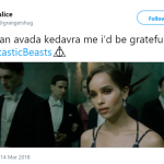 Me thinking I can solver the entire Fatastic Beasts mystery after watching one trailer. (Photo: Twitter)