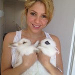 Shakira hopped into spring as she introduced two new pets: a pair of cute, fluffy rabbits. (Photo: Instagram)
