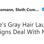 This is not the last time y'all hear about Meghan Markle's single gray hair. (Photo: Twitter)