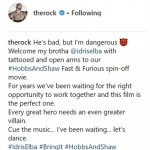 The Rock announced the news of Idris Elba joining his cast via Instagram. (Photo: Instagram)