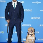 "Tom Hardy and his best friend, his dog Woody, made quite an entrance at the U.K. premiere of his movie ""Legend."" (Photo: WENN)"