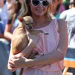 Paris Hilton and her iconic Chihuahua named Peter Pan made a special appearance on the red carpet of Extra. (Photo: WENN)