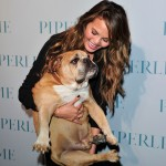 Chrissy Teigen cuddle up to her adorable bulldog Puddy at the launch of Piperlime's first store in Los Angeles. (Photo: WENN)