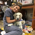 Beside being a Playboy model, Shauna is also a full-time veterinary technician. No wonder why her Instagram page is filled with pics of dogs. (Photo: Instagram)