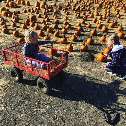 Armie Hammer's kids, Ford and Harper, rocked coordinating baby-blue ensembles as they sat in a field of pumpkins and waved to someone off the camera. (Photo: Instagram)