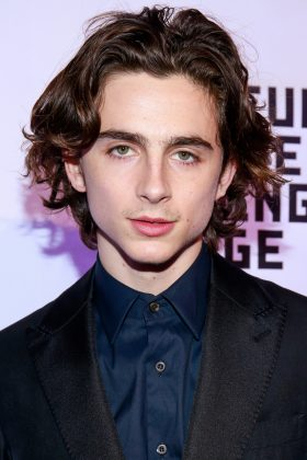 "WHO? Timothée Chalamet. WHY? After staring in Luca Guadagnino's romance ""Call Me By Your Name"" and Greta Gerwig's coming-of-age ""Lady Bird,"" feel free to call me by HIS name. (Photo: WENN)"