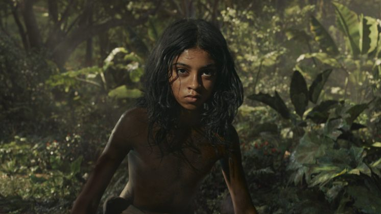 Mowgli: Legend of the Jungle-December 7. (Photo: Release)