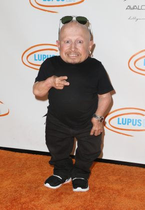 Verne Troyer, best known for playing Mini-Me in the Austin Powers, died at age 49 on April 21. No cause of death was revealed. (Photo: WENN)