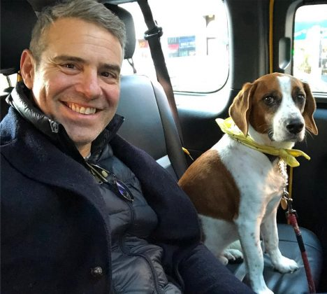 "Andy Cohen announced on his ""Watch What Happens Live"" in December that he is expecting a child, a baby boy, via surrogate this year. (Photo: Instagram)"