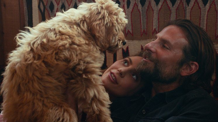 Bradley Cooper – A Star Is Born (2018) (Photo: Release)