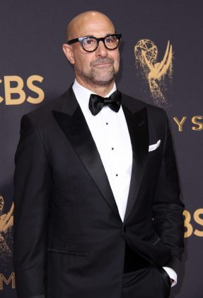 Stanley Tucci's sexiness comes partially from the fact that he's so comfortable in his own skin. And that includes his bare, shiny scalp! (Photo: WENN)