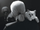 What else should we know about Choupette Lagerfeld aside from the fact that she is the late designer's heiress? Click through to learn 7 facts about the Karl Lagerfeld's cat. (Photo: Instagram)