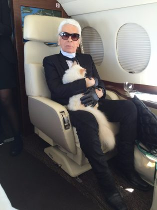 "Choupette originally belonged to the model Baptiste Giabiconi. Lagerfeld was just taking care of the cat while her owner was away. But the fashion designer fell in love with Choupette. ""Sorry but I'm keeping her!"" Lagerfeld told Baptiste when he came home. (Photo: Instagram)"
