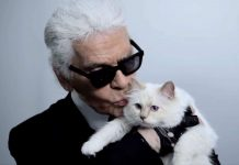 Click through our photo gallery to see all the reactions to the news that Choupette the cat is one of Karl Lagerfeld's heiress. Never thought I'd be this jealous of a cat. (Photo: Instagram)