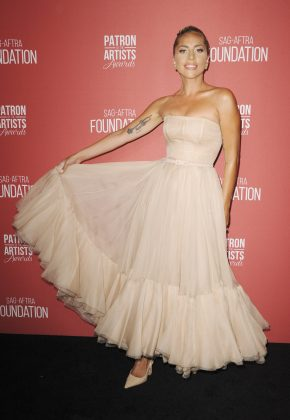 Lady Gaga was honored at the Patron of the Arts Awards in a blush-color sheer tulle dress by Dior with matching heels. (Photo: WENN)