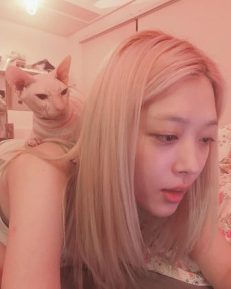 Sulli was an animal lover. She was specially obsessed with her sphynx cat, and would regularly share picture with him on Instagram. (Photo: Instagram)