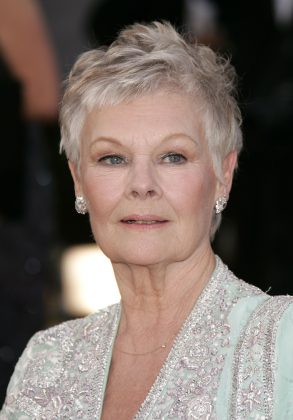 Before, Judi Dench was a blonde, but she has since transitioned fully to a flattering white-gray pixie cut. (Photo: WENN)
