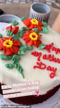 The pregnant actress celebrated Mother's Day with her mom, and got her a delicious looking cake as well The pregnant actress celebrated Mother's Day with her mom, and got her a delicious looking cake as well (Photo: Instagram)